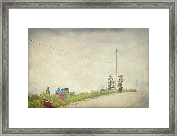 Harvesting Blueberries  Framed Print