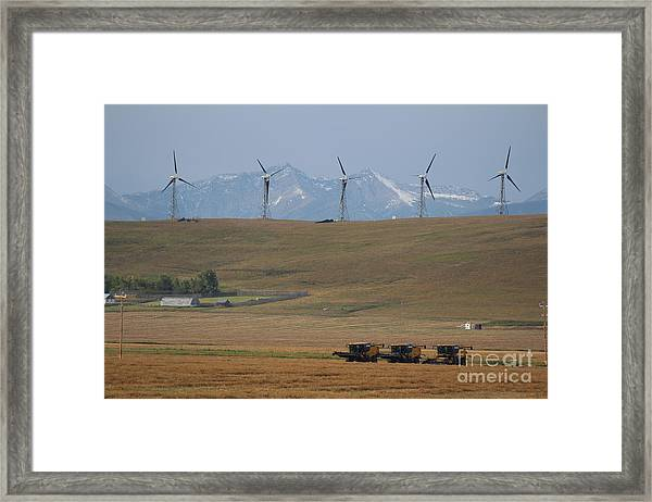 Harvesting Wind And Grain Framed Print