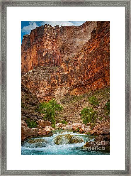 Havasu Creek Number 3 Framed Print