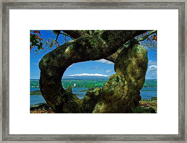 Hawaii Snow Framed Print