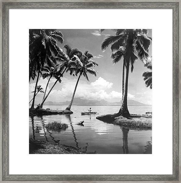 Hawaii Tropical Scene Framed Print