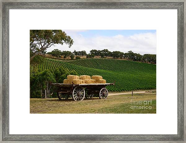 Hay Wagon Framed Print