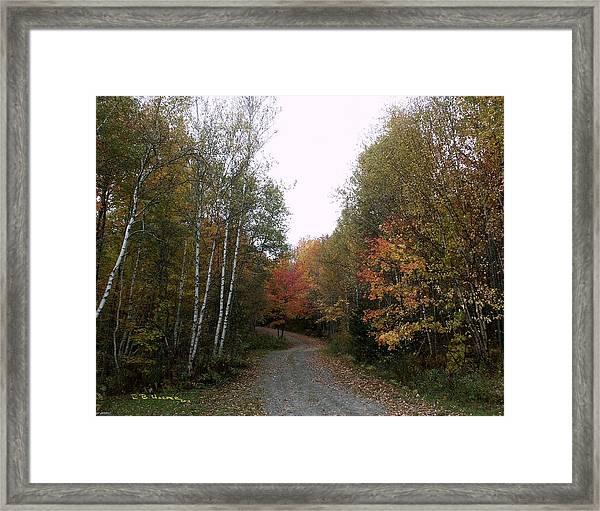 Hazens Notch Vermont Framed Print