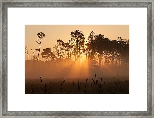 Hazy Summer Morning Sunrise Framed Print