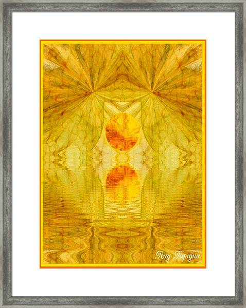 Healing In Golden Sunlight Framed Print by Ray Tapajna