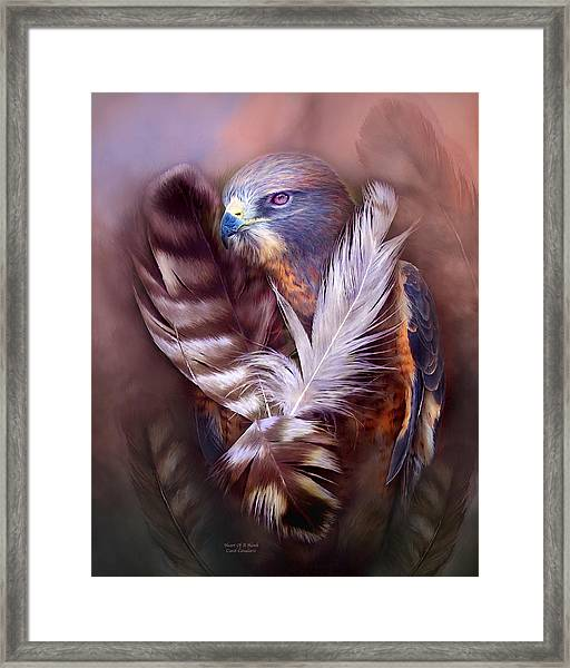 Heart Of A Hawk Framed Print