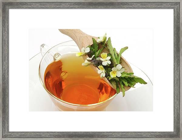 Heartsease Tea Framed Print
