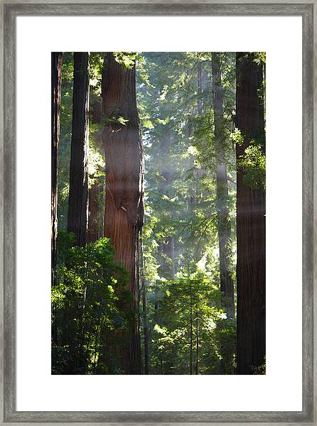 Heaven's Gate Framed Print
