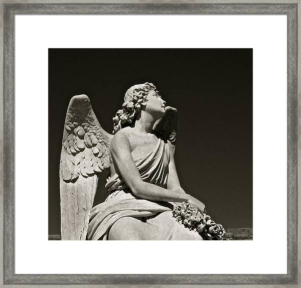 Heaven's Gaze Framed Print