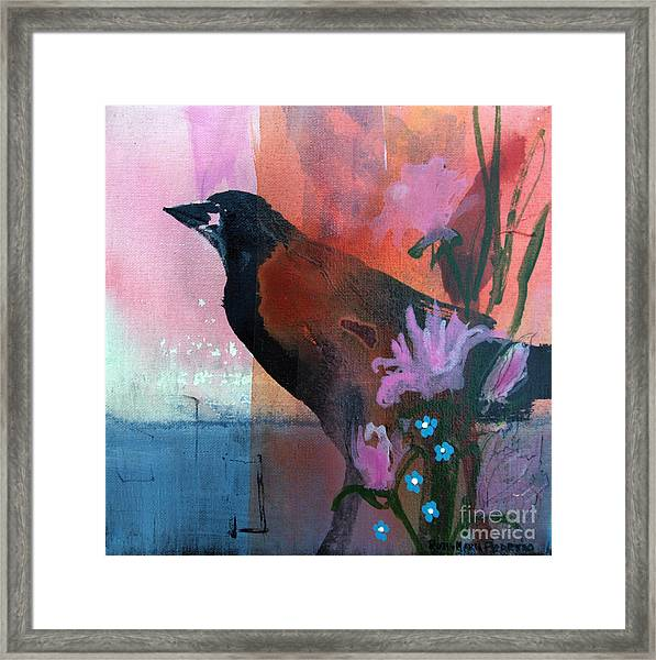 Hello Crow Framed Print