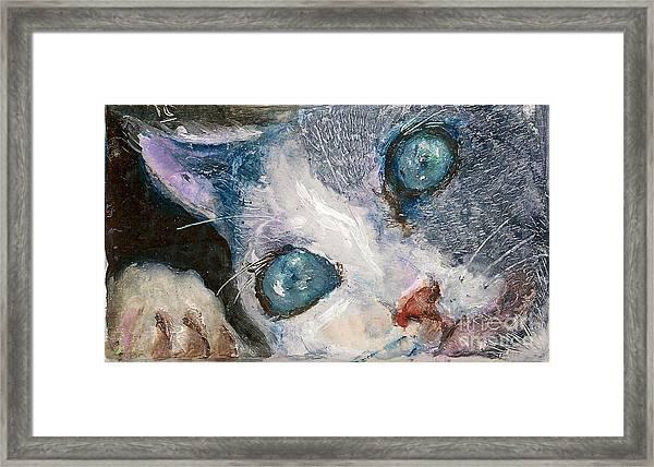 Hello Kitty Framed Print by Donna Chaasadah