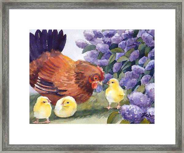 Hen And Chicks Among The Lilacs Framed Print