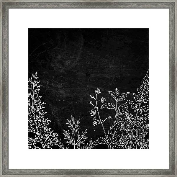 Herbs And Flowers Painted Color Line Framed Print
