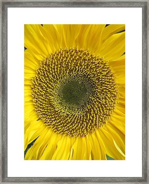 Here Comes The Sun.... Framed Print