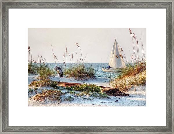Heron And Sailboat Framed Print