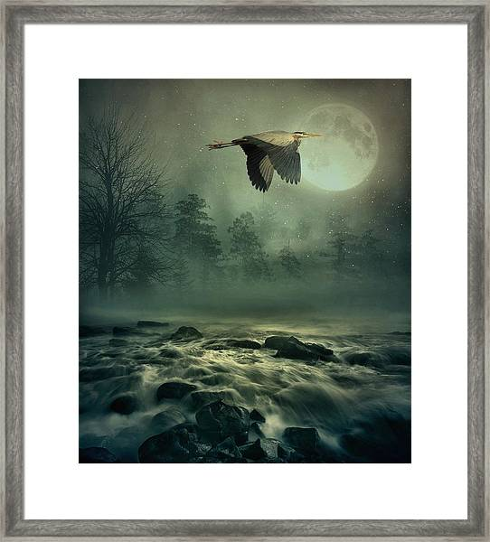 Heron By Moonlight Framed Print