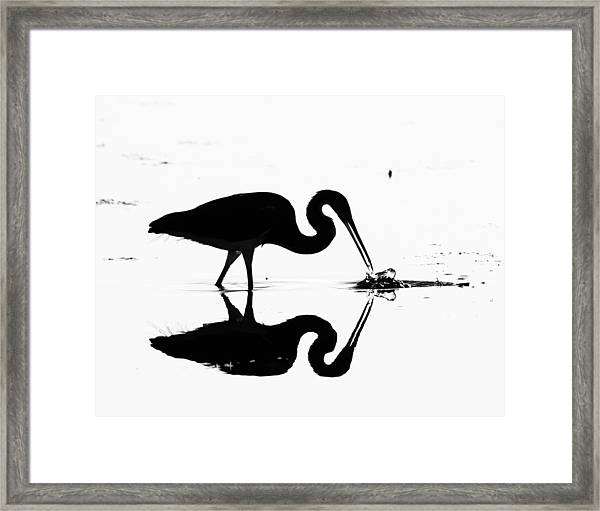 Heron Silhouette Framed Print by Brian Magnier