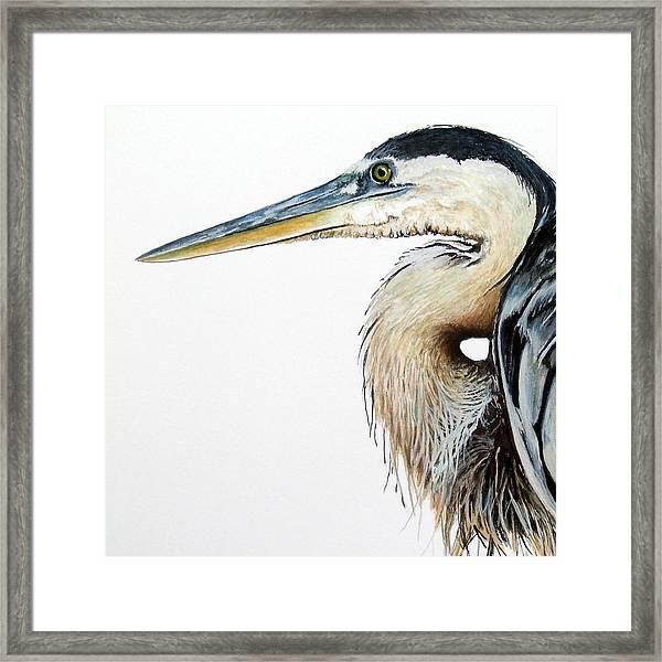 Heron Study Square Format Framed Print