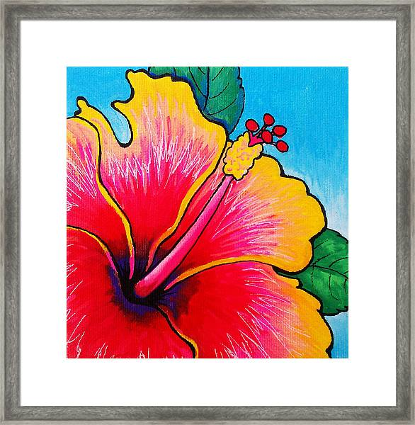 Hibiscus 01 Framed Print