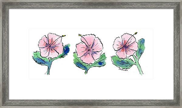 Hibiscus Trio Framed Print