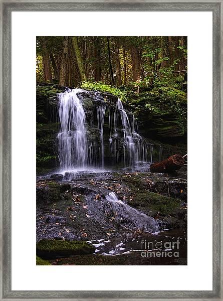Hidden Waterfalls Of Wayne County I Framed Print