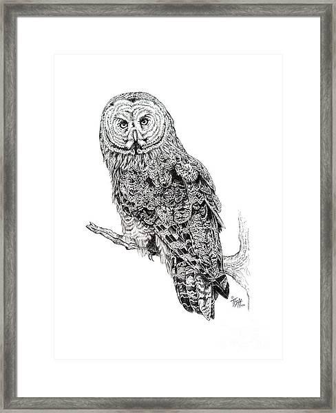 Hidden Wisdom Framed Print