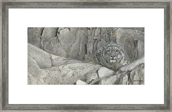 Hiding In The Himalayas Framed Print