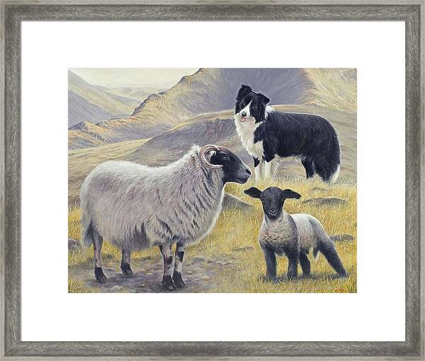 Highland Spirit Framed Print