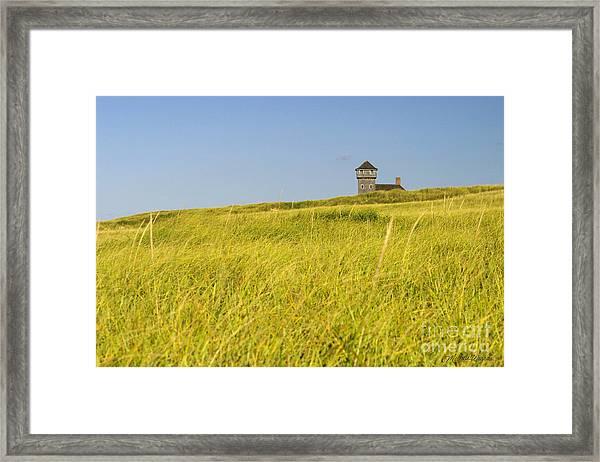 Hillside At The Beach In Truro Framed Print