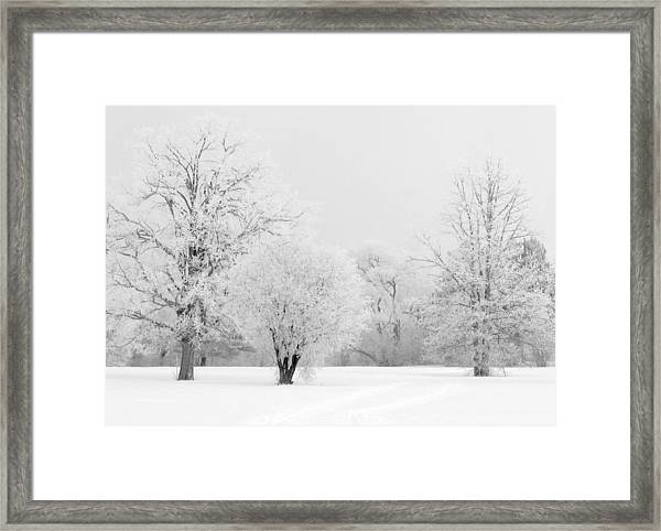 Hoar Frost Morning Framed Print