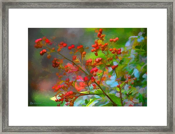 Holly Berry Framed Print