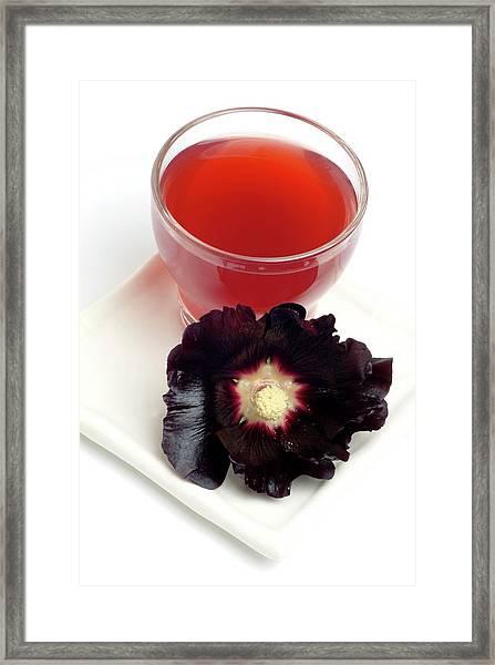 Hollyhock Herbal Tea Framed Print by Bildagentur-online/th Foto/science Photo Library