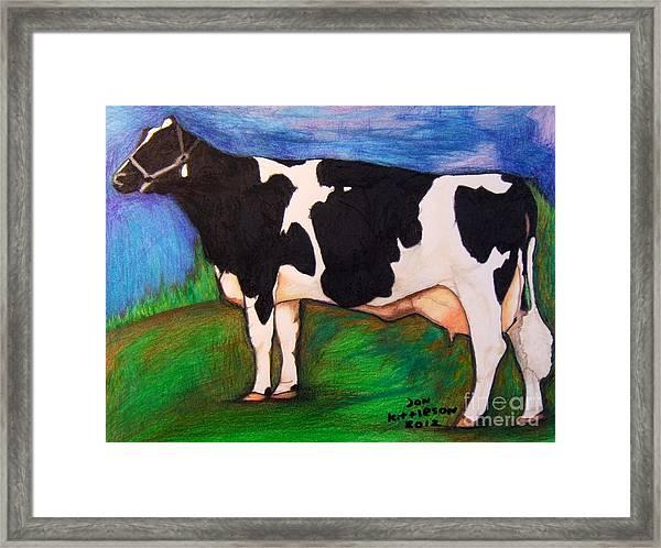 Holstein Framed Print
