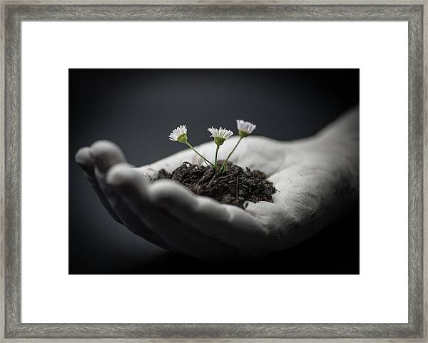 Hope Framed Print by Mike Melnotte