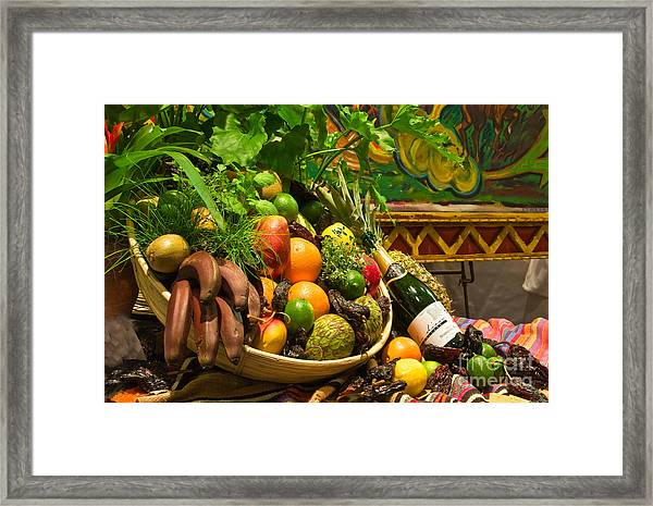 Framed Print featuring the photograph Fruit And Wine 1 by Mae Wertz