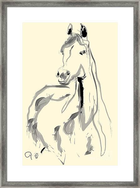 Horse - Arab Framed Print