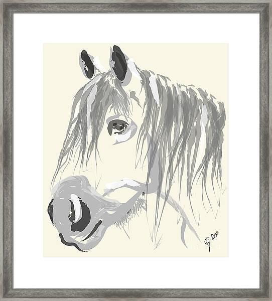 Horse- Big Jack Framed Print