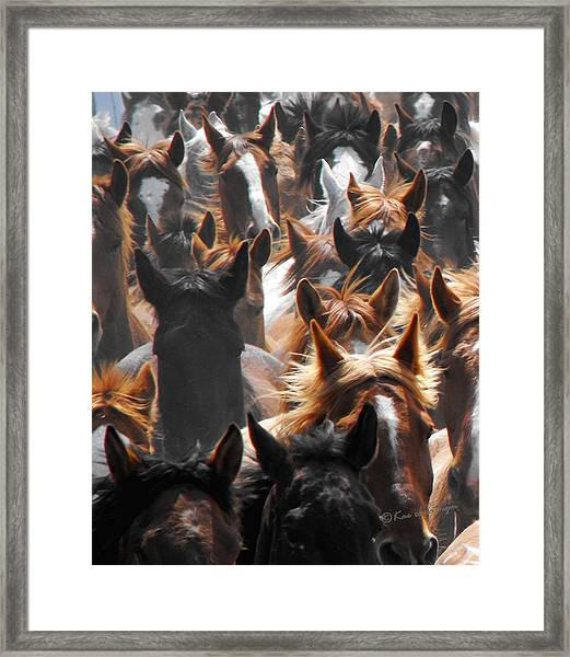 Horse Ears Framed Print