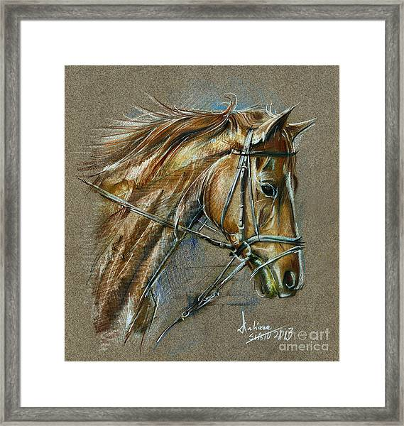 My Horse Face Drawing Framed Print