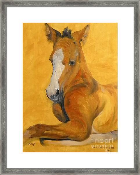 horse - Gogh Framed Print