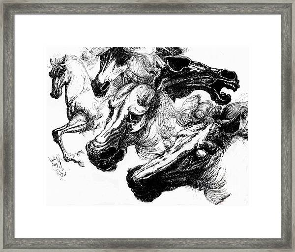 Horse Ink Drawing  Framed Print