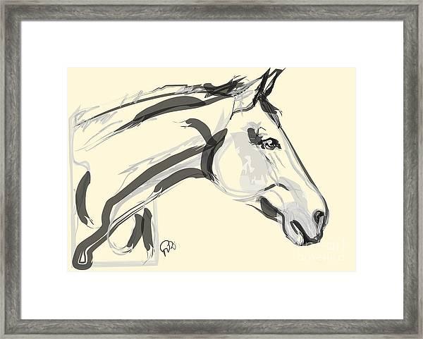 Horse - Lovely Framed Print