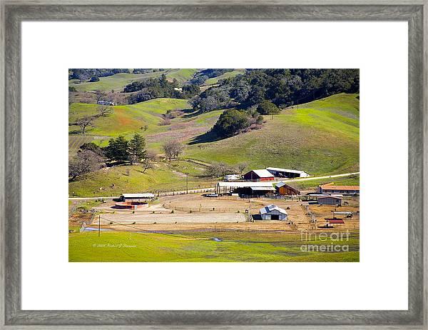 Horse Ranch Framed Print