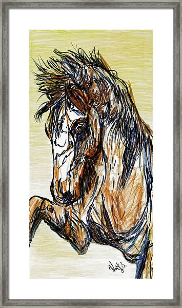 Horse Twins II Framed Print