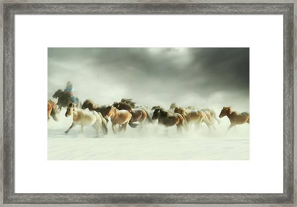 Horses Gallop Framed Print