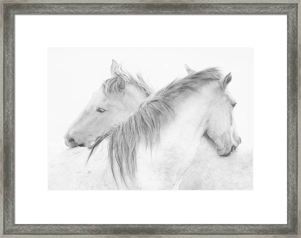 Horses Framed Print by Marie-anne Stas