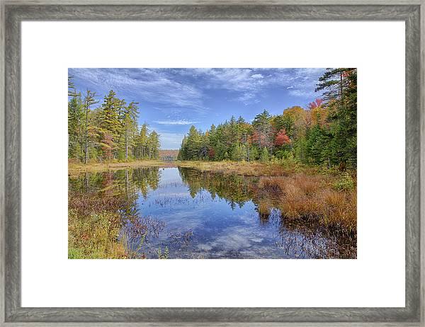 Horseshoe Lake Hdr 01 Framed Print