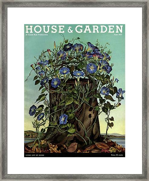 House And Garden Cover Featuring Flowers Growing Framed Print