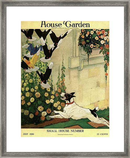 House And Garden Small House Number Cover Framed Print
