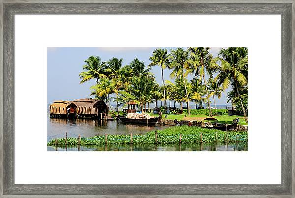 Houseboats Docked Along Shore Framed Print